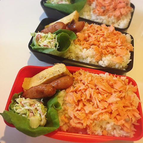 鮭ごはんのお弁当